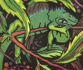 Dawns Iguana